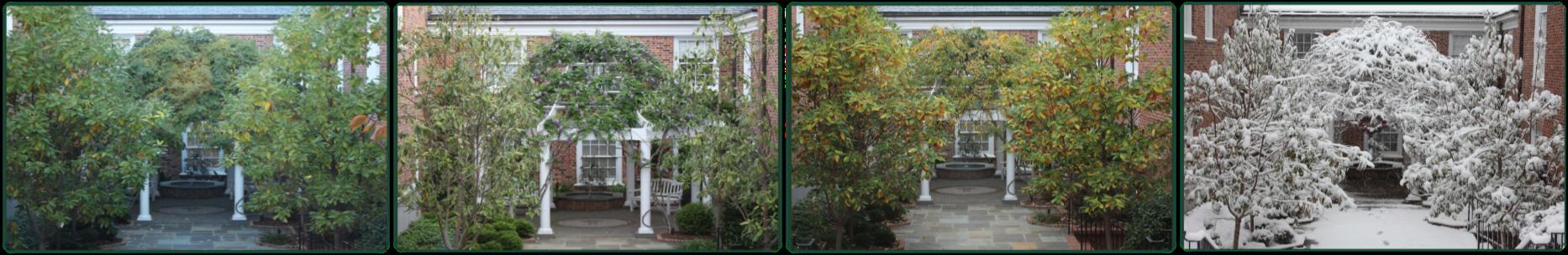 Memorial Garden Seasons