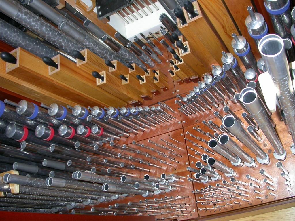 organ 006